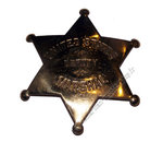 US marshall deputy badge