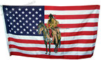 USA indian horse flag