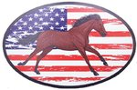 "Magnet Voiture ""USA HORSE"""